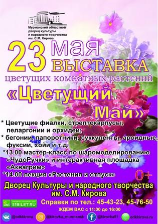 Выставка цветущих комнатных растений Цветущий Май!