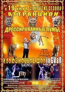"""""""Аттракцион дрессированные пумы и иллюзионное шоу Ingvar"""""""