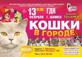 """""""Кошки в городе"""""""